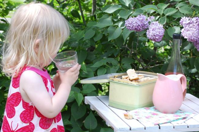 Syrensaft och skorpor i syrenbersån