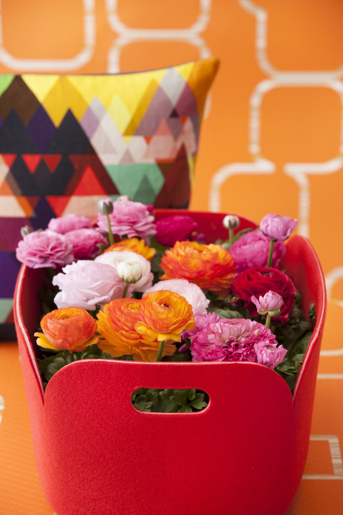 Vårtrend fr Floradania Ranunkler i rosa rött och orange