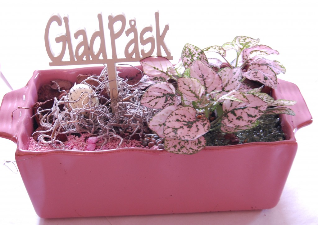 Påskplantering (4)