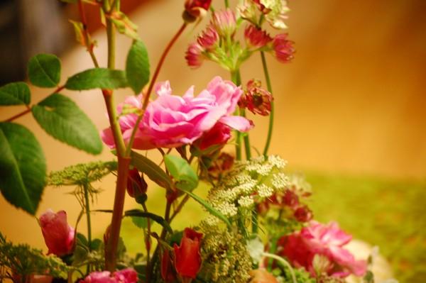 Blomsterdekoration med rosen Therese Bugnet, Stjärnflocka, Tandpetarsilja och Dichondra Silver falls (3)