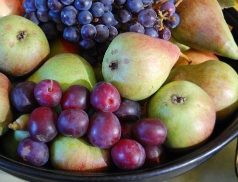 Plommon Czar vindruva zilga päron suvenirs