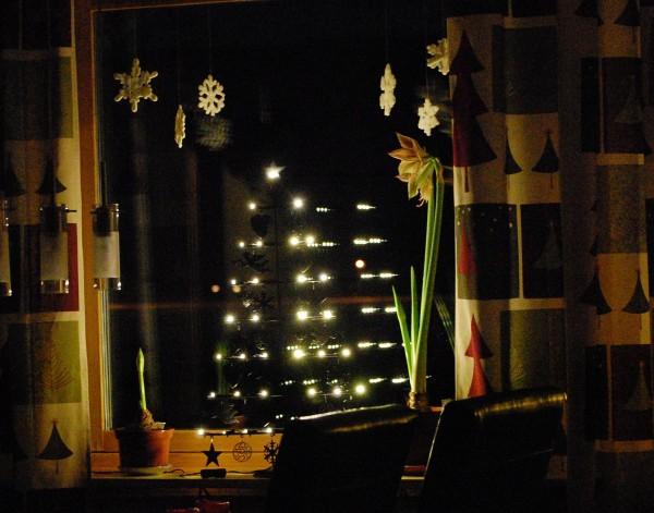 Köksfönstret med snöstjärnor