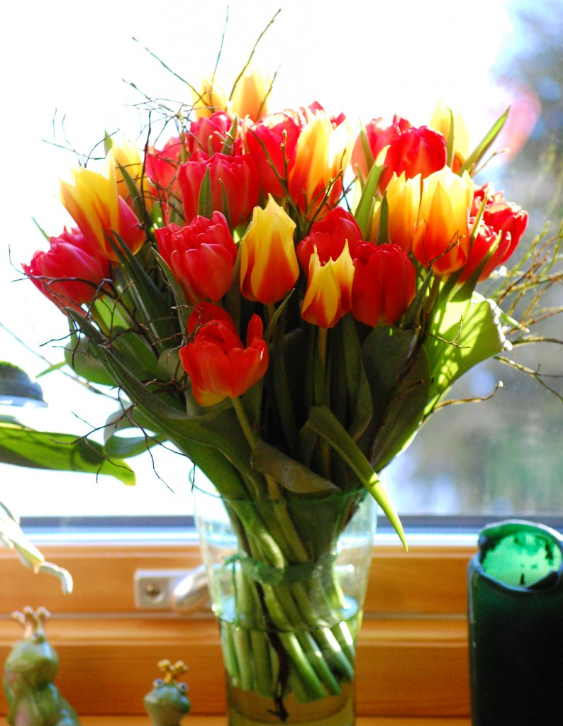Tulpanbukett i gult och rött (2)