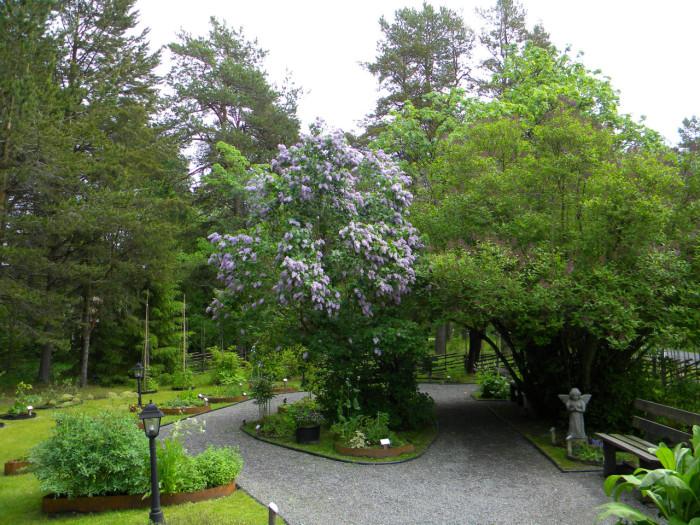 Örtagården Köpmanholmen