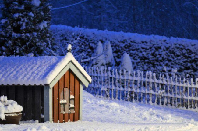 Vinter i Salsåker, som tur är sitter ingen hund i kojan och huttrar