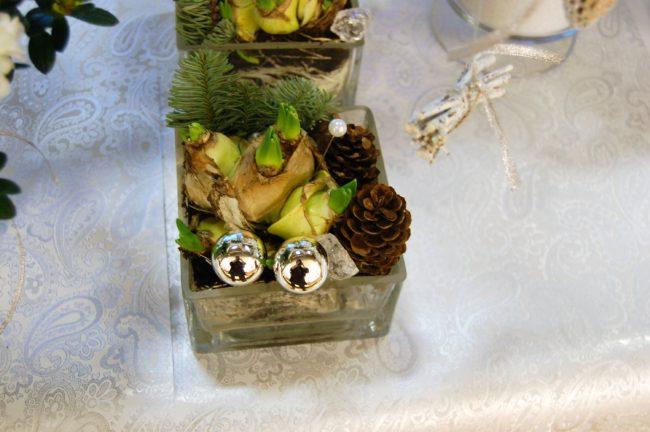 Multiflorahyacint blomar länge med många små blommor