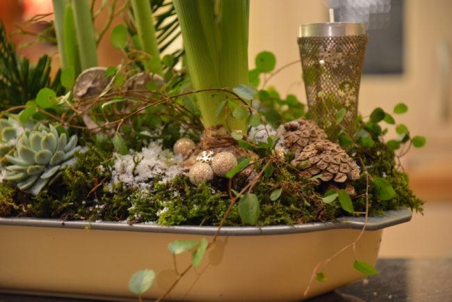 Plättar i luften slingrar sig fint runt de andra växterna