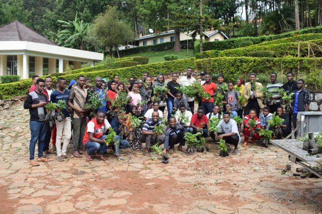 trädplantering för miljön och bekämpa fattigdom